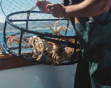 Crab Pot With Fisherman On The...