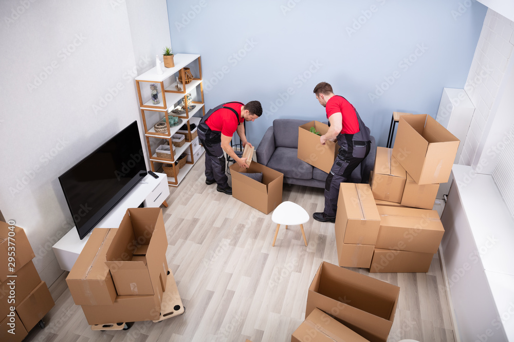 Fototapety, obrazy: Men Loading The Cardboard Boxes During Moving