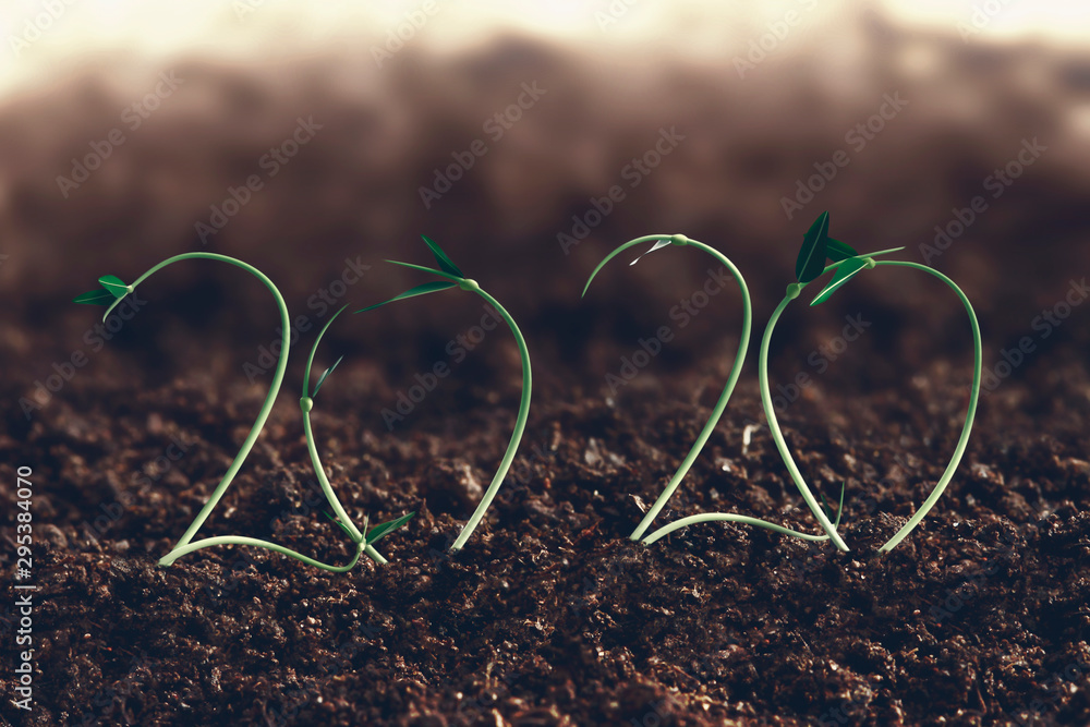 Fototapety, obrazy: 2020 new year and farm growth concept