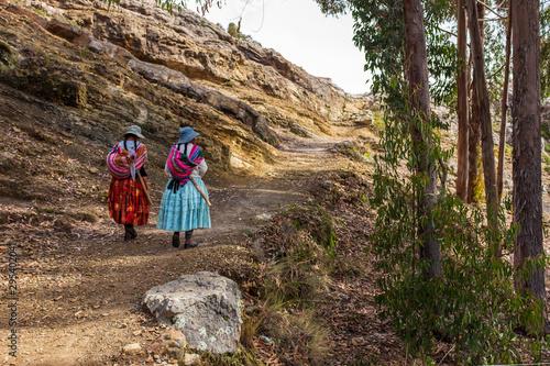 Challapampa, La Paz / Bolivia, January 14 2016: Aymara Woman/Cholitas Walking in Wallpaper Mural