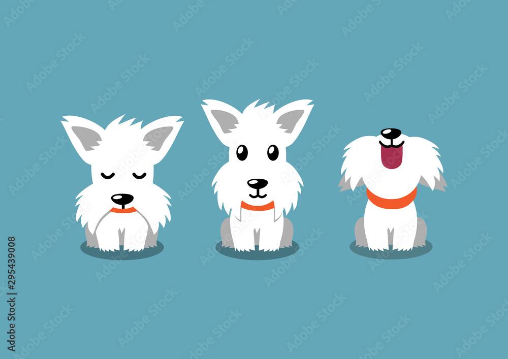 Fototapeta Cartoon character white scottish terrier dog poses for design.