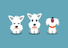 Cartoon Character White Scottish Terrier Dog Poses For Design.