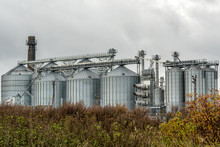 Agricultural Silos For Grain C...