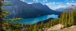 Gorgeous Peyto Lake Panorama