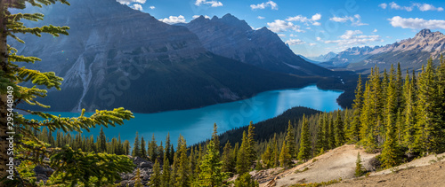 Gorgeous Peyto Lake Panorama - 295448049