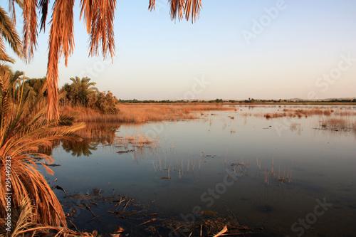Shoreline of Fatnas Island, Siwa Oasis in the Egyptian Sahara Desert