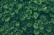 Green Leaves Texture Background, Suitable for Natural Concept.