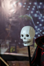 White Skull Head . Halloween F...