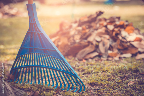 Fotografie, Obraz Pile of fall leaves with fan rake on public park.