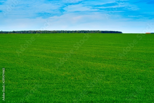 Recess Fitting Green agricultural landscape of the green field against the background of the blue sky