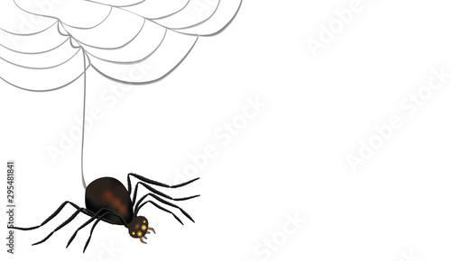 Spinne mit leuchtenden Augen links ausgerichtet vom Netz hängend mit Textfreifläche