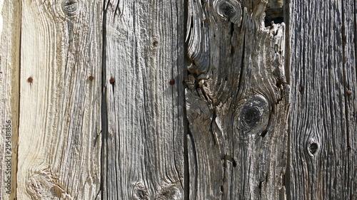 Fotomural  Deteriorated wooden door from an uninhabited village of Yesa in Navarre