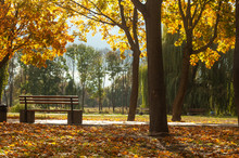 Bila Tserkva, Ukraine - 11 Oct...