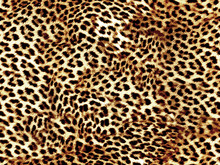 Leopard Seamless Pattern Brown...