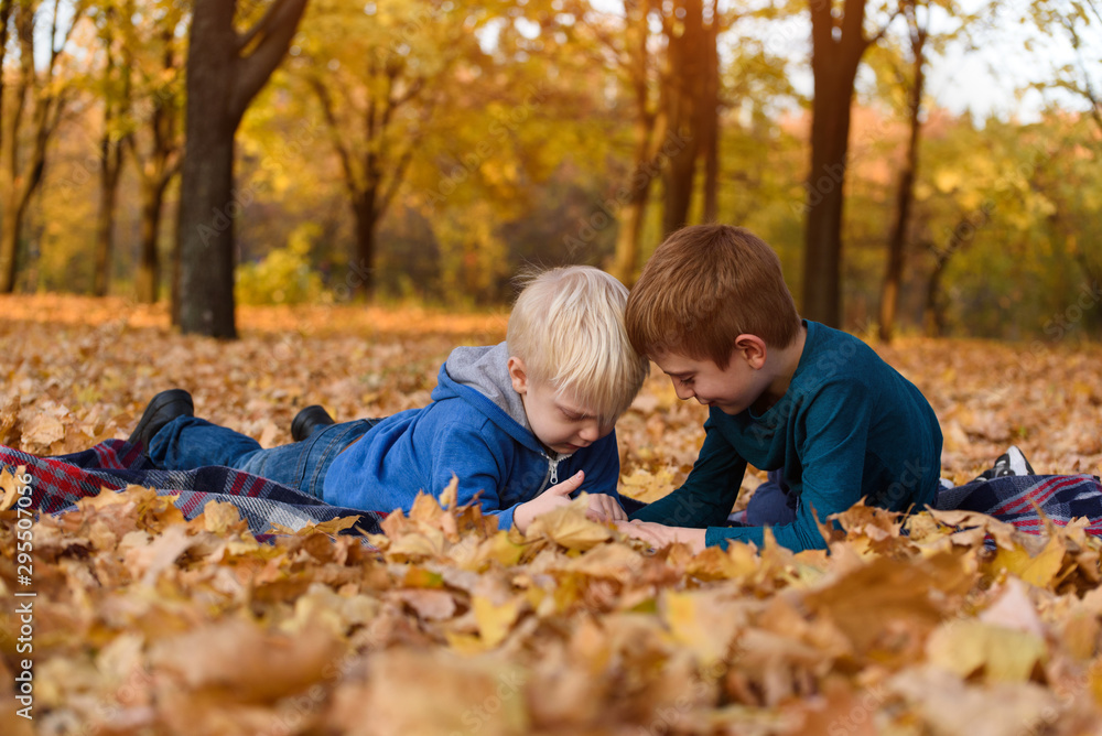 Fototapety, obrazy: Two little brothers using smartphone, lying in yellow autumn leaves. Smiling and having fun. Fall day