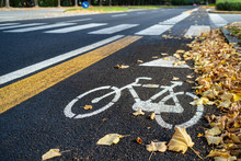 Bicycle Lane In Autumn