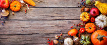 Thanksgiving Banner - Pumpkins And On Rustic Plank