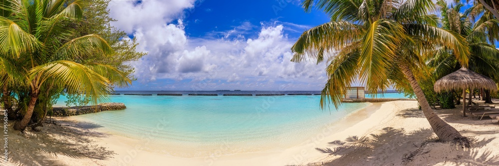 Fototapeta Beach panorama at Maldives with blue sky, palm trees and turquoise water