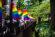 Pride Flags In The Park At Stonewall