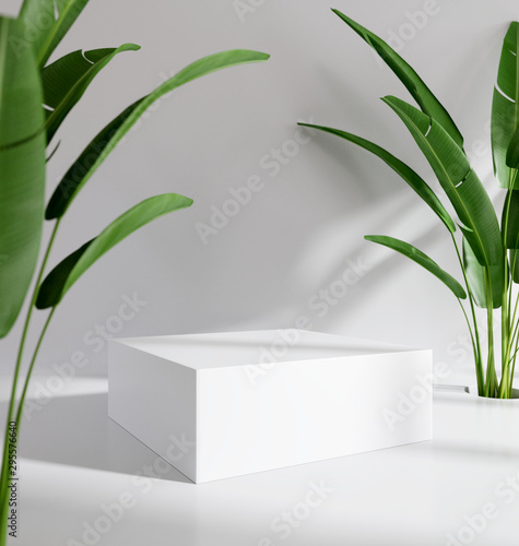 Fotomural Blank product stand with tropical plants. 3d rendering