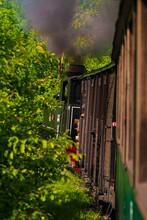 Running Wood-burning Locomotive Of Mocanita (Maramures, Romania). Green Forest In Background