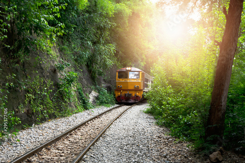Montage in der Fensternische Dunkelbraun The train on the train tracks and the trees with the sunset