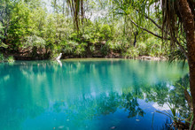 Berry Springs, A Fresh Water S...