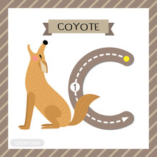Letter C Uppercase Tracing. Howling Coyote