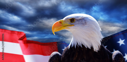 Tablou Canvas North American Bald Eagle (Haliaeetus leucocephalus) and USA flag with dark storm clouds at the background
