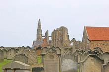 Whitby Abbey And St Marys Chur...