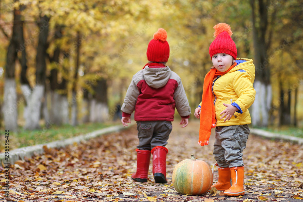 Fototapety, obrazy: Children are walking in nature. Twilight kids are walking around the park. Brother with sister in autumn city park in leaf fall.