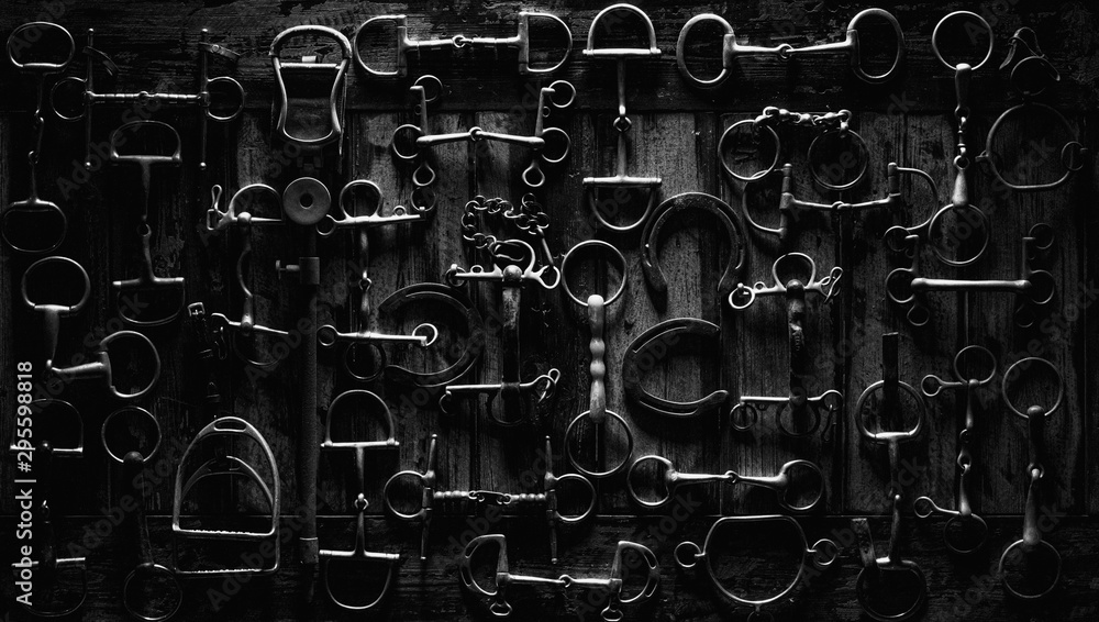 Fototapeta top down photo of horse equipment, bits & shoes on a wooden table in black & white.