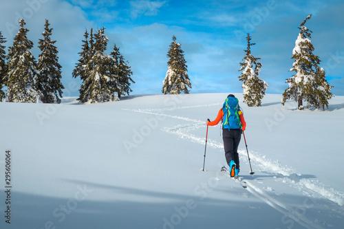 Ski touring in the deep fresh snow, Transylvania, Carpathians, Romania