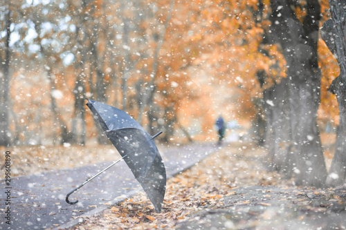 Montage in der Fensternische Amsterdam Autumn park in the first snow