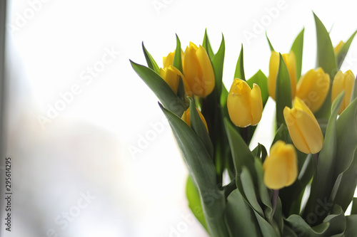 Photo  A bouquet of yellow tulips in a vase on the windowsill