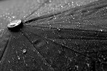 Umbrella In Drops Of Water
