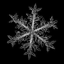 Snowflake Isolated On Black Ba...