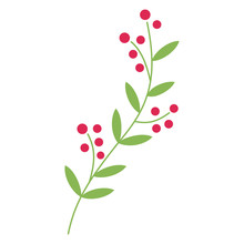 Vector Illustration Of An Isolated Simple Green Vine With Red Berries.