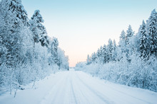 Beautiful Fabulous Winter Landscape, The Road Going Through The Forest, Everything Is Covered With Snow.