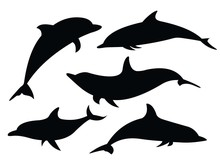 Silhouettes Of Dolphins. Set. ...