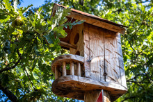 Beautiful Wooden Bird House Ne...