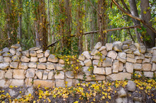 Steinmauer Mit Herbstlaub