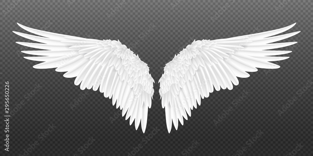 Fototapeta Realistic wings. Pair of white isolated angel style wings with 3D feathers on transparent background. Vector illustration bird wings design