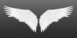 Fototapeta Fototapety na ścianę do pokoju dziecięcego - Realistic wings. Pair of white isolated angel style wings with 3D feathers on transparent background. Vector illustration bird wings design