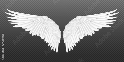 Fototapeta Realistic wings. Pair of white isolated angel style wings with 3D feathers on transparent background. Vector illustration bird wings design obraz