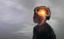 Brain Nervous System Concept.S...