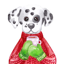 Watercolor Dalmatian Dog In Sweater Holding Cup Of Coffee. Hand Drawn Dog Greeting Card