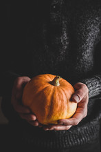 Man Holding Small Pumpkin In H...