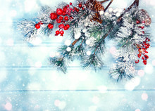 Winter Background With Fir Bra...