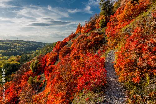 Fotografie, Obraz  Herbstlicher Spaziergang entlang der Saale-Horizontale im wunderschönen Jena - J